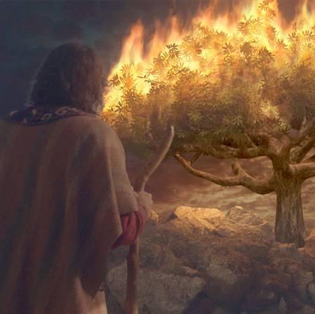 ¡Dios buscó a Moisés! - Parte 1