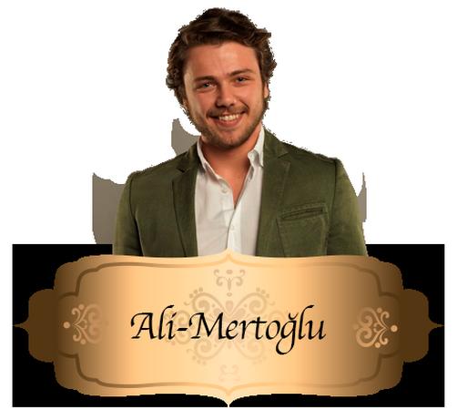 Ali Mertoğlu