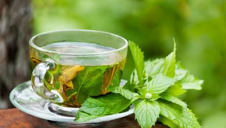Las opciones de la medicina homeopática