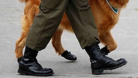 Millonaria compra de 10 mil pares de botas complica a Carabineros