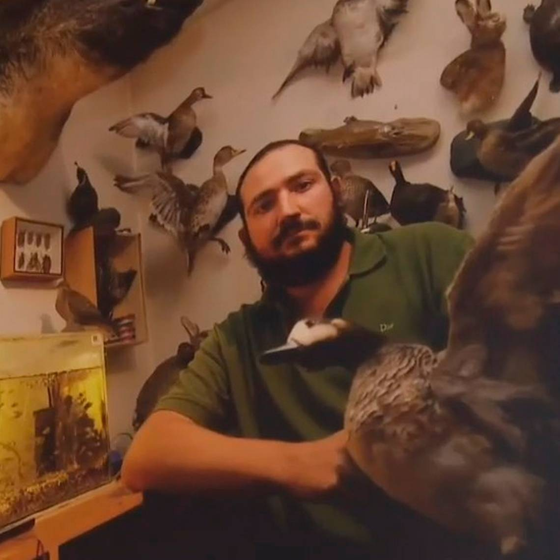 Miguel vive con más de 200 animales embalsamados
