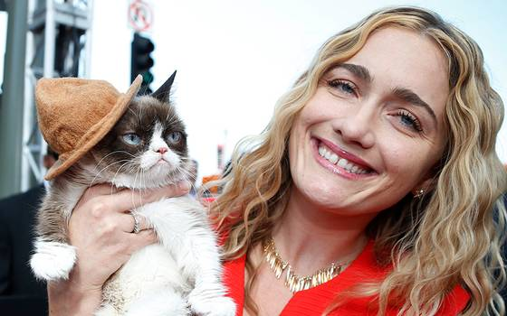 "Falleció ""Grumpy cat"", la gata ""enojona"" más popular de internet"