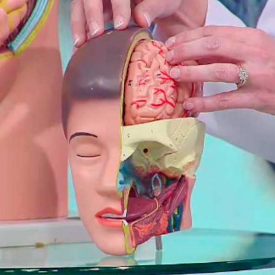¿Cómo detectar un tumor cerebral?