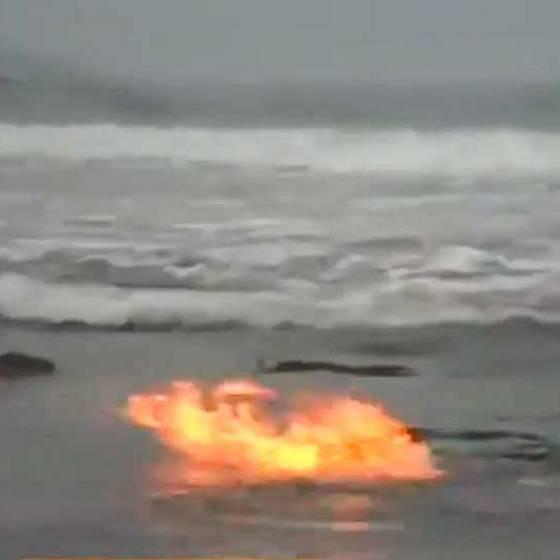 ¿Por qué se enciende el mar en Chile?