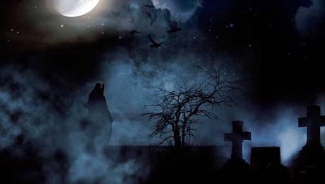 Los misterios que envuelven al Cementerio General