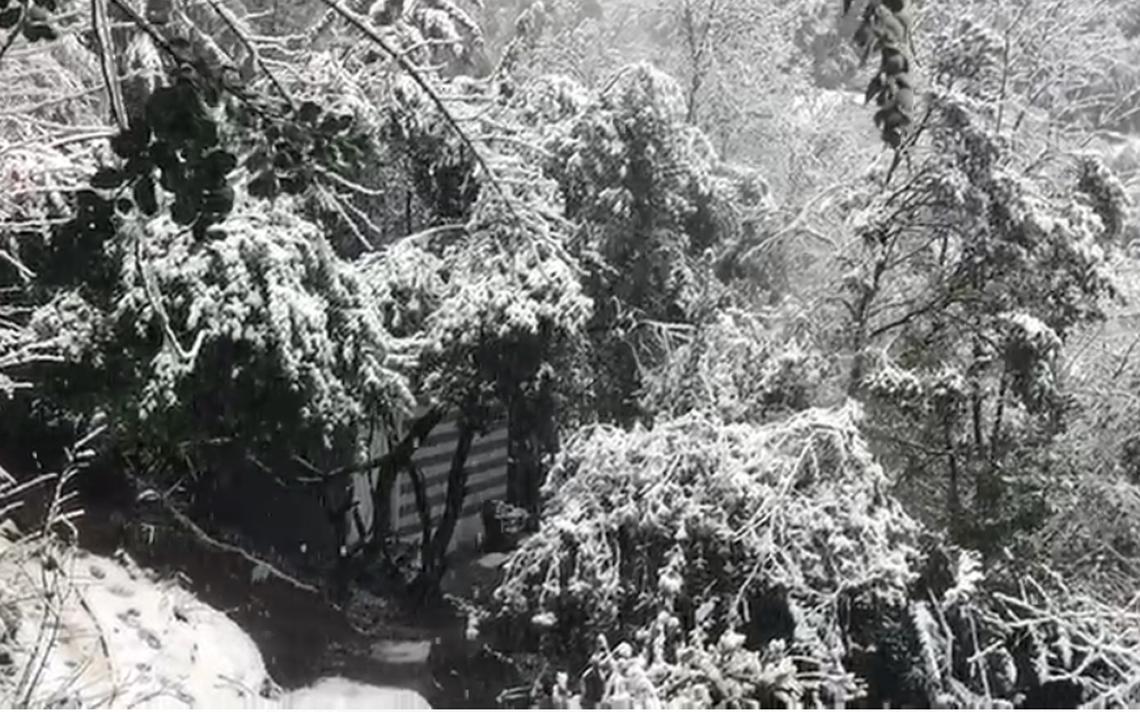nieve.PNG