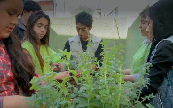 Colegio de Pudahuel se la juega por la ecología y la energía solar