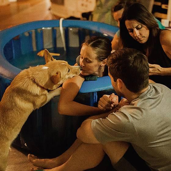 Pura ternura: Fiel perro acompañó a su dueña mientras daba a luz