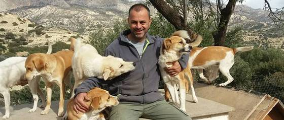 La historia del hombre que rescató más de 200 perros