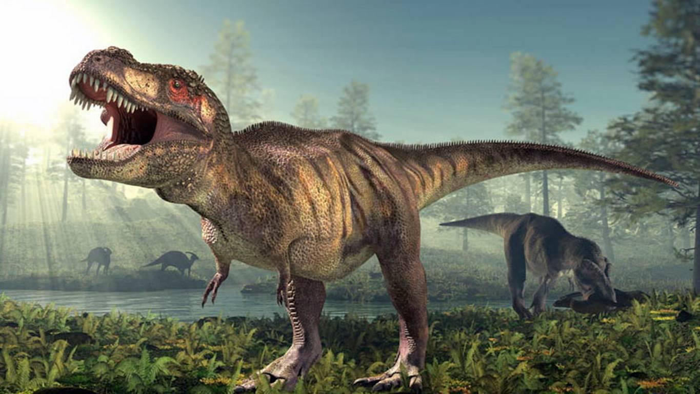 ¡Nuevos hallazgos! El Tyrannosaurus Rex no podía correr