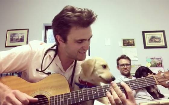 El guapo veterinario que enamora a la web con sus tiernas terapias